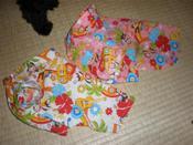 20090809_p8080867_aloha_shirts