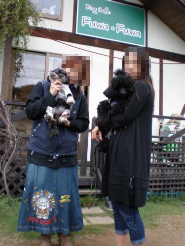 20080928_p9281212_fuwafuwa
