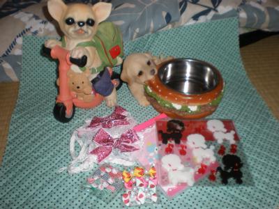 20090815_p8214470_goods