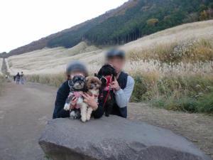 20101109_cimg3342_