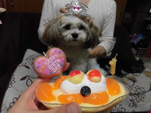 20160827_cimg5669_cake_cake